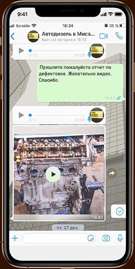 отчет whats'app